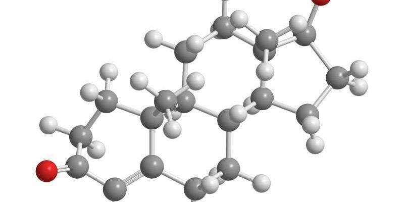 Учёные улучшили понимание того, как ключевые гормоны действуют в клетках